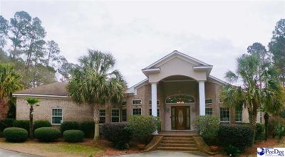 Hamer SC Single Family Home For Sale: $389,000