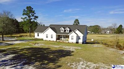 Darlington Single Family Home For Sale: 2452 Lide Springs Rd.