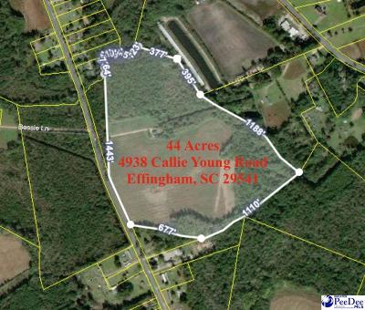 Effingham Residential Lots & Land For Sale: 4938 Callie Young Road