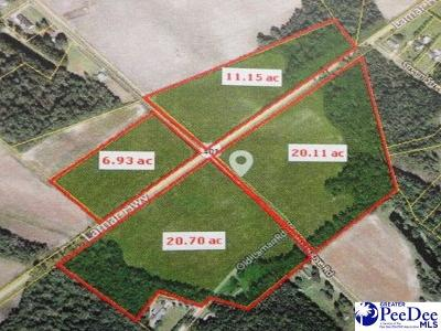 Effingham, Darlington, Darlinton, Florence, Flrorence, Marion, Pamplico, Timmonsville Residential Lots & Land Uc/Show For Back Up: Hwy 401 & Potato House Road
