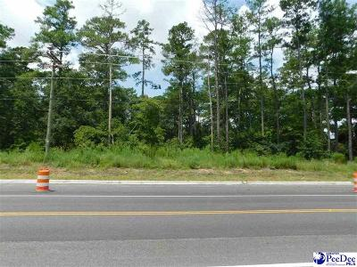 Florence, Flrorence, Marion, Pamplico Commercial Lots & Land For Sale: TV Rd