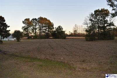 Effingham, Darlington, Darlinton, Florence, Flrorence, Marion, Pamplico, Timmonsville Residential Lots & Land For Sale: Boling Road