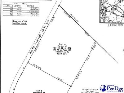 Effingham, Darlington, Darlinton, Florence, Flrorence, Marion, Pamplico, Timmonsville Residential Lots & Land For Sale: Bull Road