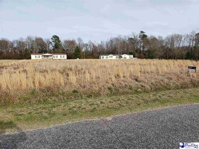 Effingham, Darlington, Darlinton, Florence, Flrorence, Marion, Pamplico, Timmonsville Residential Lots & Land For Sale: Shirrel Mill Rd