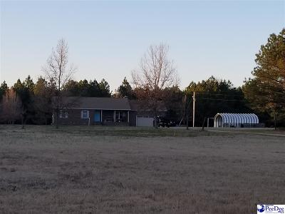 Bennettsville Single Family Home Uc/Show For Back Up: 399 Turkey Run Lane