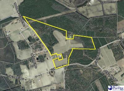 Effingham, Darlington, Darlinton, Florence, Flrorence, Marion, Pamplico, Timmonsville Residential Lots & Land For Sale: Maidendown Rd.