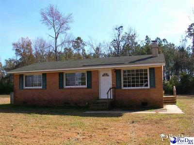 Effingham Single Family Home For Sale: 3202 Lebanon Rd