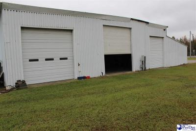 Commercial For Sale: 1061 E Bobo Newsome Hwy