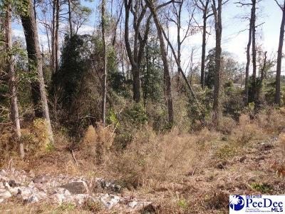 Florence Residential Lots & Land For Sale: 2628 TV Road