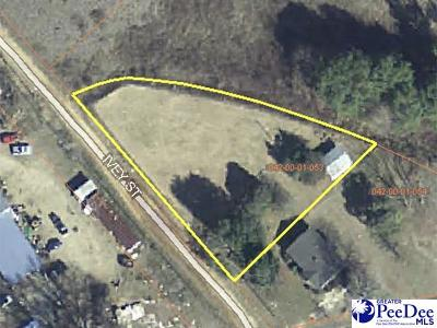Clio Residential Lots & Land For Sale: 466 Ivey Street Extension