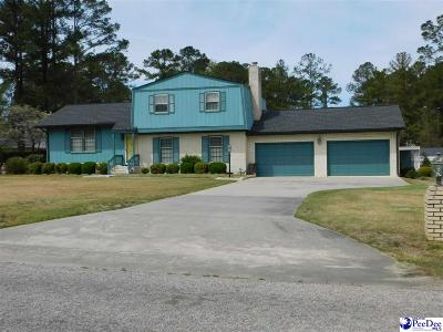 Darlington Single Family Home For Sale: 107 Georgia Drive