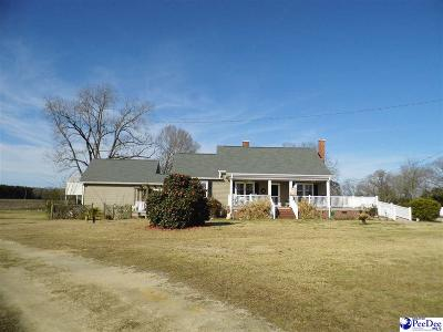 Single Family Home For Sale: 2338 Old River Road