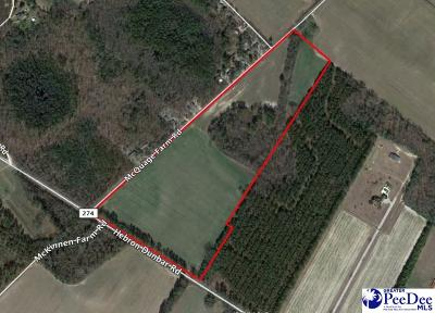 Clio Residential Lots & Land Uc/Show For Back Up: Hebron Dunbar Rd