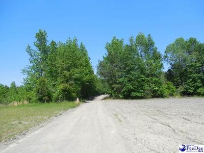 Effingham Residential Lots & Land For Sale: 2397 Goodway Drive