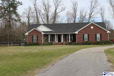 Marion County Single Family Home For Sale: 1610 Plantation Drive