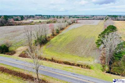 Effingham, Darlington, Darlinton, Florence, Flrorence, Marion, Pamplico, Timmonsville Residential Lots & Land For Sale: Lot 1 Hwy 340