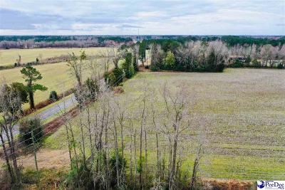 Effingham, Darlington, Darlinton, Florence, Flrorence, Marion, Pamplico, Timmonsville Residential Lots & Land For Sale: Lot 3 Hwy 340