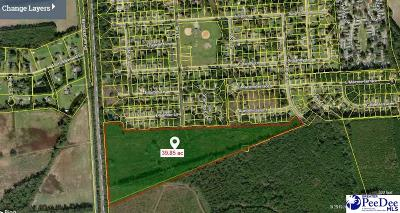 Florence Residential Lots & Land For Sale: Tara Drive