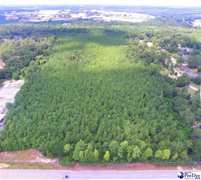 Florence, Flrorence, Marion, Pamplico Commercial Lots & Land For Sale: W Palmetto Street
