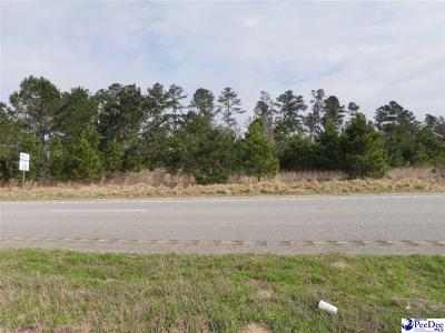 Dillon County Residential Lots & Land For Sale: Hwy 38