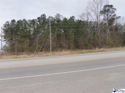 Dillon County Residential Lots & Land For Sale: S Hwy 301