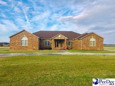 Bennettsville, Blenheim, Cilo, Clio, Mccoll, Tatum, Wallace Single Family Home For Sale: 615 Sulgrave Rd.