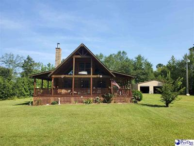 Bennettsville, Blenheim, Cilo, Clio, Mccoll, Tatum, Wallace Single Family Home For Sale: 293 Covington Road