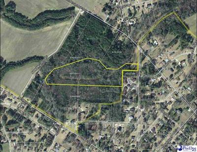 Dillon County Residential Lots & Land For Sale: Marion Street