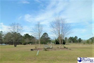 Dillon County Residential Lots & Land For Sale: 459 Annie Ln