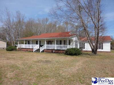 Effingham Single Family Home Uc/Show For Back Up: 2297 Alligator Road