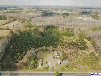 Residential Lots & Land New: 800 Foxboro Road