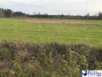 Florence County Residential Lots & Land For Sale: 1898 N Old Georgetown Road
