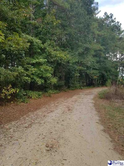 Bennettsville Residential Lots & Land Active-Extended: Two Lots Vintage Drive