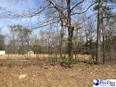 Residential Lots & Land For Sale: Beaverdam Drive