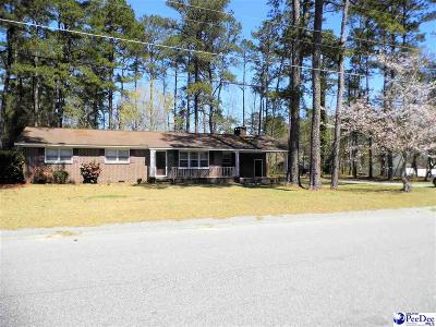 Lake View, Lakeview, Dillon Single Family Home For Sale: 1011 Jewel Court