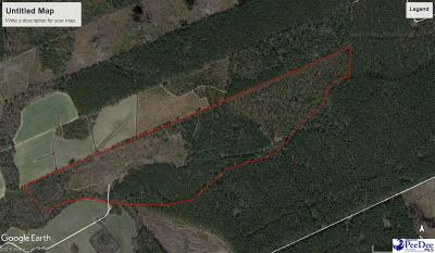 Friendfield SC Residential Lots & Land For Sale: $299,900