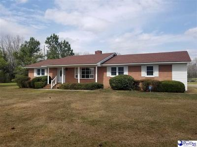 Latta Single Family Home For Sale: 1010 Skillet Rd.