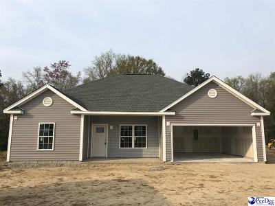 Darlington County Single Family Home New: 1022 Spring Acres Drive
