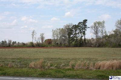 Johnsonville Residential Lots & Land For Sale: W Us Highway 378