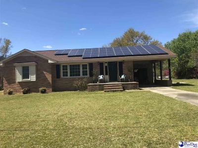 Johnsonville Single Family Home For Sale: 528 Byrnes Cir.