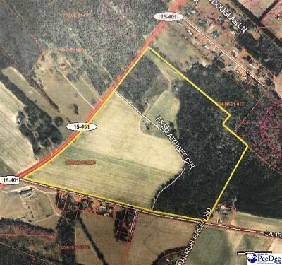 Bennettsville Residential Lots & Land Under Contingency Cont: 1736 Highway 15-401 E