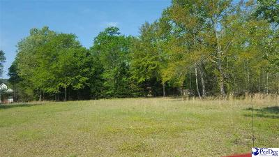 Effingham, Darlington, Darlinton, Florence, Flrorence, Marion, Pamplico, Timmonsville Residential Lots & Land For Sale: 1809 Walter Dr.