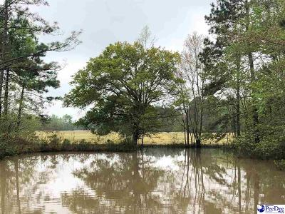 Marion SC Residential Lots & Land For Sale: $299,900