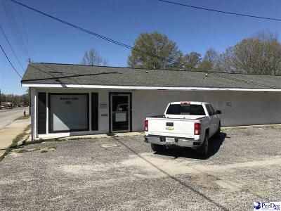 Commercial For Sale: 224 W Carolina Ave