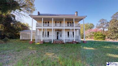 Hartsville Single Family Home For Sale: 113 E Seven Pines Street