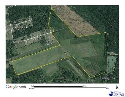 Bishopville SC Residential Lots & Land For Sale: $299,000