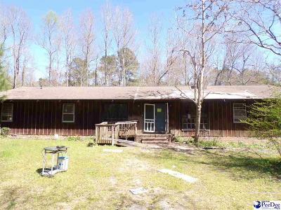 Mullins SC Single Family Home For Sale: $67,900