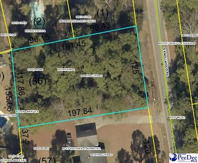 Effingham, Darlington, Darlinton, Florence, Flrorence, Marion, Pamplico, Timmonsville Residential Lots & Land For Sale: 2209 Knollwood Drive