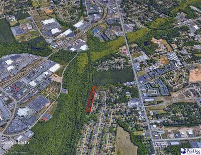 Florence Residential Lots & Land For Sale: 2800 Juniper Rd
