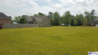 Effingham, Darlington, Darlinton, Florence, Flrorence, Marion, Pamplico, Timmonsville Residential Lots & Land For Sale: Lot 36 Greystone Drive